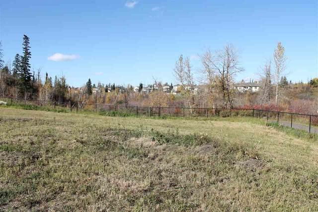 21-10550 Ellerslie Road, Edmonton, AB T6W 0Y2 (#E4242285) :: Initia Real Estate