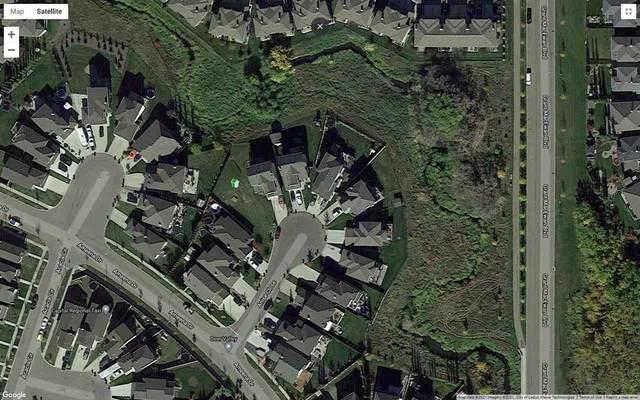 120 Anise Close, Leduc, AB T5A 0X8 (#E4242524) :: Initia Real Estate