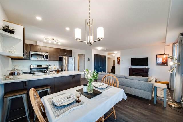 402 7711 71 Street, Edmonton, AB T6B 0M3 (#E4243188) :: Initia Real Estate