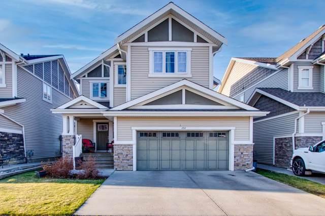 2312 Frezenberg Avenue, Edmonton, AB T5E 5R9 (#E4243648) :: Initia Real Estate