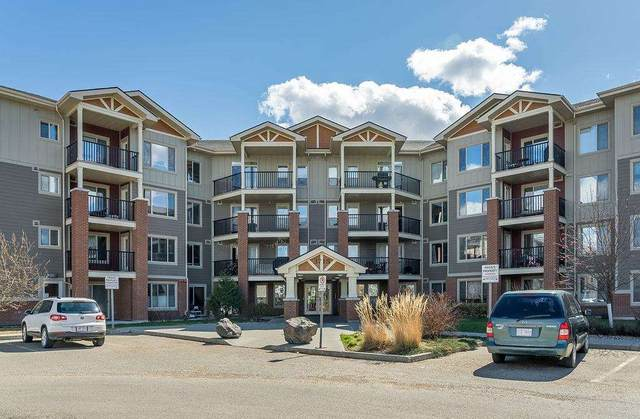 412 3715 Whitelaw Lane, Edmonton, AB T6W 2C3 (#E4243831) :: The Foundry Real Estate Company