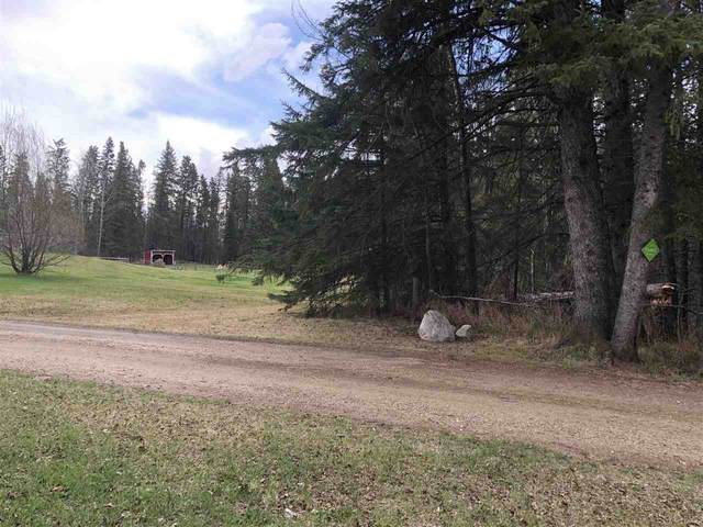 18 473009 Range Road 243A, Rural Wetaskiwin County, AB T0C 1Z0 (#E4243839) :: The Foundry Real Estate Company