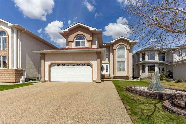 339 Ozerna Road, Edmonton, AB T5Z 3Z8 (#E4243873) :: Initia Real Estate