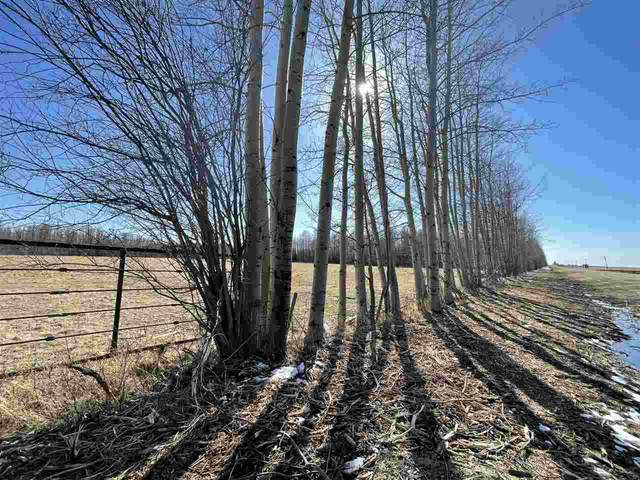 NA Twp 485, Rural Brazeau County, AB T7A 2A1 (#E4243940) :: Initia Real Estate