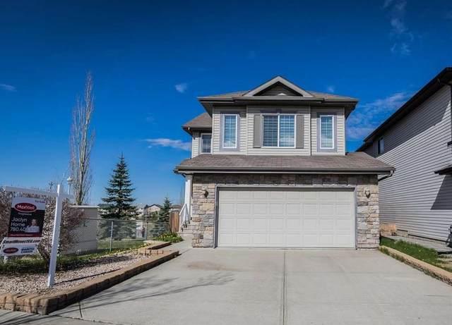 17736 87 Street, Edmonton, AB T5Z 0B8 (#E4244019) :: Initia Real Estate