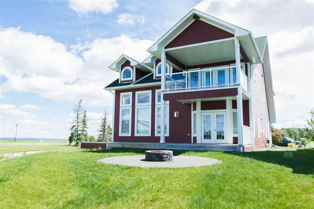 41 Sunset Harbour, Rural Wetaskiwin County, AB T0C 2V0 (#E4244118) :: Initia Real Estate