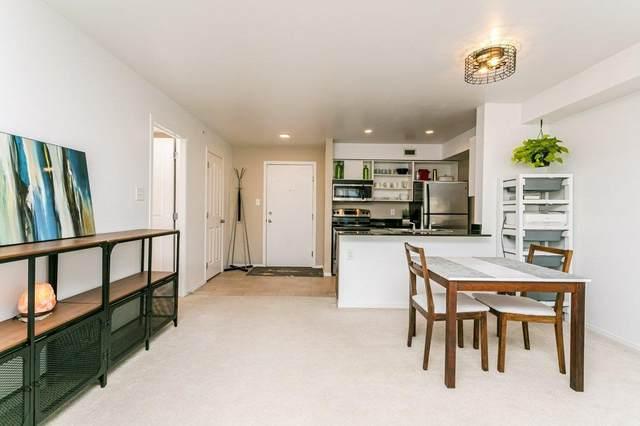 417 11803 22 Avenue, Edmonton, AB T6W 2R9 (#E4244188) :: Initia Real Estate