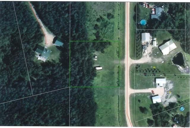 2 Beachside Estates, Rural Wetaskiwin County, AB T0C 2V0 (#E4245364) :: Initia Real Estate