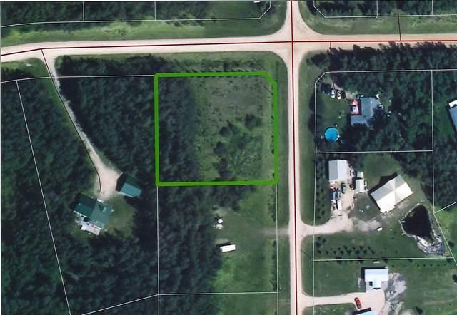1 Beachside Estates, Rural Wetaskiwin County, AB T0C 2V0 (#E4245366) :: Initia Real Estate