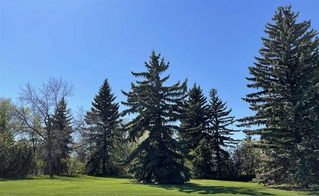 8717 Saskatchewan Drive, Edmonton, AB T6G 2A9 (#E4245756) :: Initia Real Estate