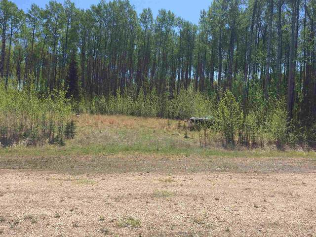 Rural Lesser Slave River M.D., AB T0G 2B0 :: The Foundry Real Estate Company