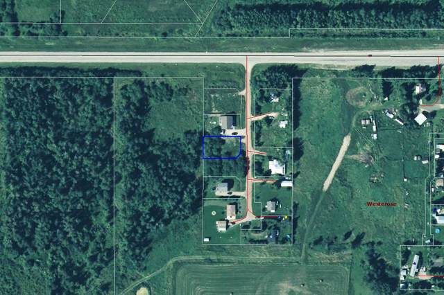 425 Swedberg Street, Rural Wetaskiwin County, AB T0C 2V0 (#E4247942) :: Initia Real Estate
