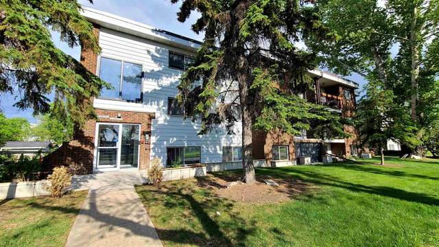 204 10949 109 Street, Edmonton, AB T5H 3C2 (#E4248102) :: Initia Real Estate