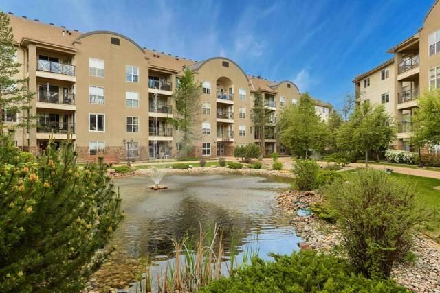 203 8922 156 Street, Edmonton, AB T5R 5Z3 (#E4248729) :: The Good Real Estate Company