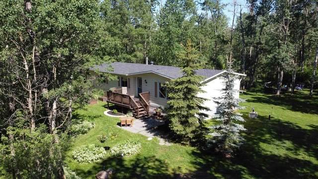302 51369 RGE RD 225, Rural Strathcona County, AB T8C 1H3 (#E4249652) :: Müve Team | RE/MAX Elite