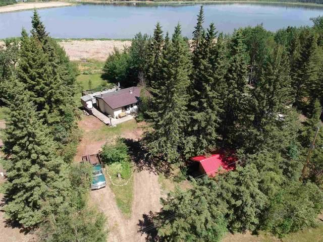 4316 Leisure Lane, Rural Lac Ste. Anne County, AB T0E 1V0 (#E4249672) :: Initia Real Estate