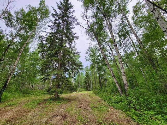 Lot 14 Block 1 Lake Country Estates, Rural Athabasca County, AB T0A 0M0 (#E4249906) :: Müve Team | RE/MAX Elite
