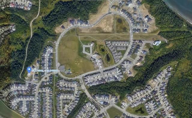 1308 Clement Court, Edmonton, AB T6M 0C9 (#E4249926) :: Müve Team | RE/MAX Elite