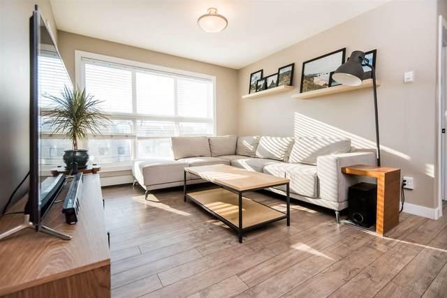 303 8515 99 Street, Edmonton, AB T6E 3T7 (#E4250797) :: The Foundry Real Estate Company