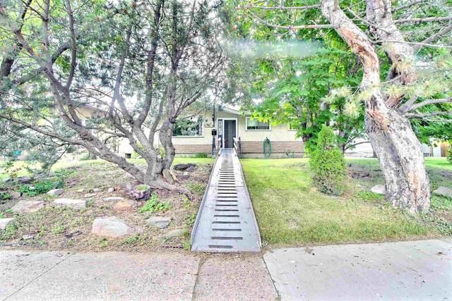 5332 104A Street, Edmonton, AB T6H 2M1 (#E4251148) :: Initia Real Estate