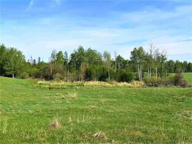 55308 Rr 32, Rural Lac Ste. Anne County, AB T0E 1A0 (#E4251271) :: Initia Real Estate