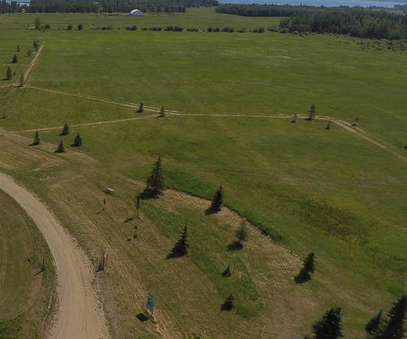 7 Lynn Creek Estates, Rural Wetaskiwin County, AB T0C 0T0 (#E4252460) :: Müve Team   RE/MAX Elite