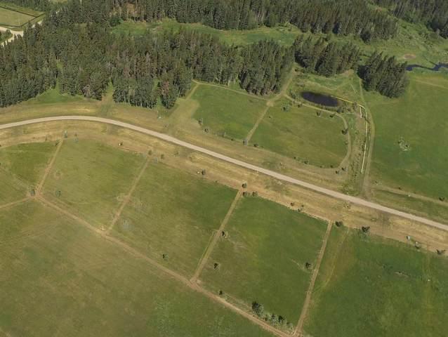10 Lynn Creek Estates, Rural Wetaskiwin County, AB T0C 0T0 (#E4252472) :: Müve Team   RE/MAX Elite