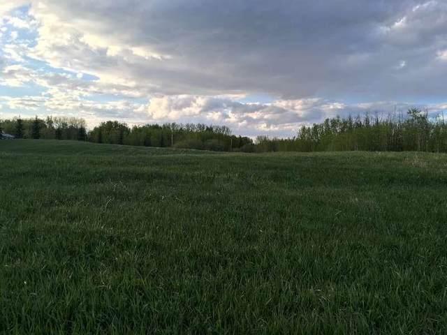 21-50110 Rr 203, Rural Beaver County, AB T0B 4A0 (#E4253003) :: RE/MAX River City