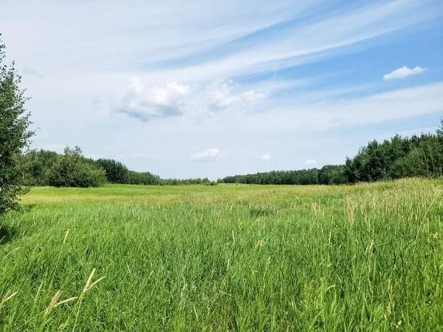 RR 222 TWP 504 LOT 1, Rural Leduc County, AB T0B 4M4 (#E4254469) :: The Good Real Estate Company