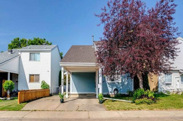 9238 54 Street, Edmonton, AB T6B 2L4 (#E4254701) :: Müve Team | RE/MAX Elite