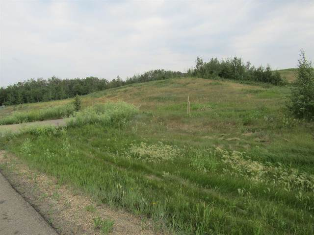 100 49320 RGE RD 240A, Rural Leduc County, AB T4X 0W1 (#E4254965) :: The Good Real Estate Company