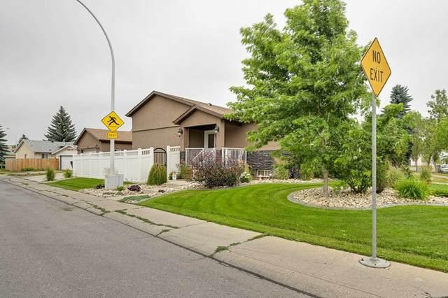 17204 91 Street NW, Edmonton, AB T5Z 2M9 (#E4255390) :: Müve Team | RE/MAX Elite
