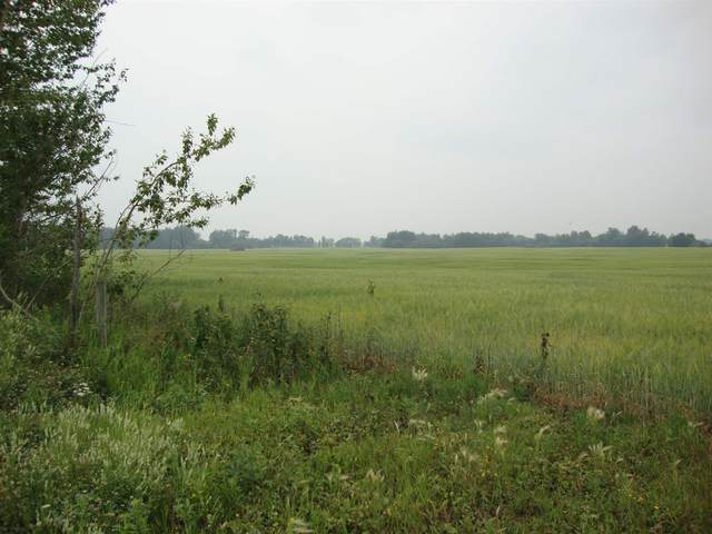 Twp610 Rr222, Rural Thorhild County, AB T0A 3J0 (#E4255509) :: Müve Team | RE/MAX Elite