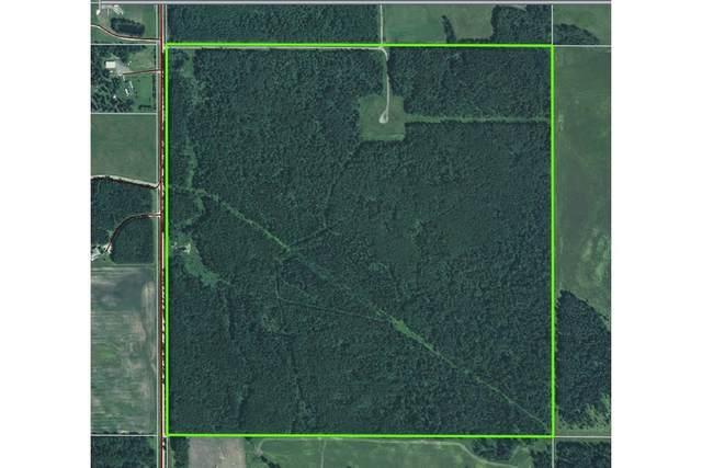 On Range Road 71, Rural Wetaskiwin County, AB T0C 0A0 (#E4255671) :: Müve Team | RE/MAX Elite