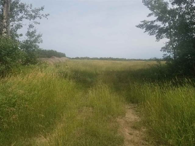 602 Rr230, Rural Thorhild County, AB T0A 3J0 (#E4256035) :: RE/MAX River City