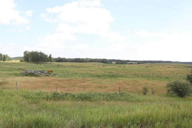 Twp 510 RR 33, Rural Leduc County, AB T0C 2T0 (#E4256128) :: Müve Team | RE/MAX Elite