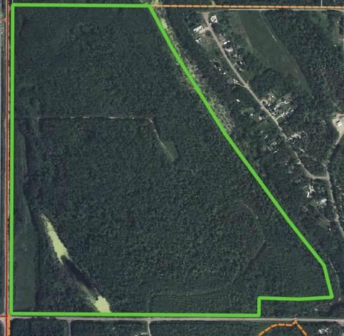 NE Corner Rr 101 & Twp Rd 594, Rural St. Paul County, AB T0A 3A0 (#E4256290) :: Müve Team | RE/MAX Elite