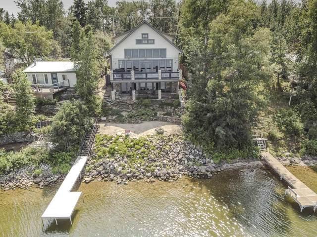 203 Lakeshore Drive, Rural Wetaskiwin County, AB T0C 2V0 (#E4256725) :: Initia Real Estate