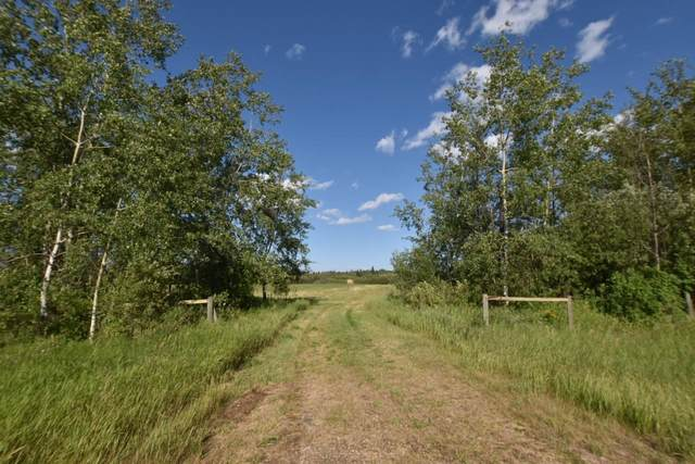 SE 25 65 17 W4, Rural Athabasca County, AB T0A 0R0 (#E4256844) :: The Foundry Real Estate Company