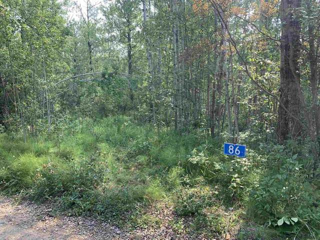 #86 Birchwood Country Condo, Rural Brazeau County, AB T0C 1W0 (#E4257067) :: Initia Real Estate