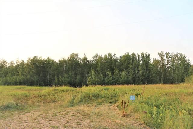 74 50226 Rge Rd 204, Rural Beaver County, AB T0B 4J0 (#E4257204) :: Initia Real Estate