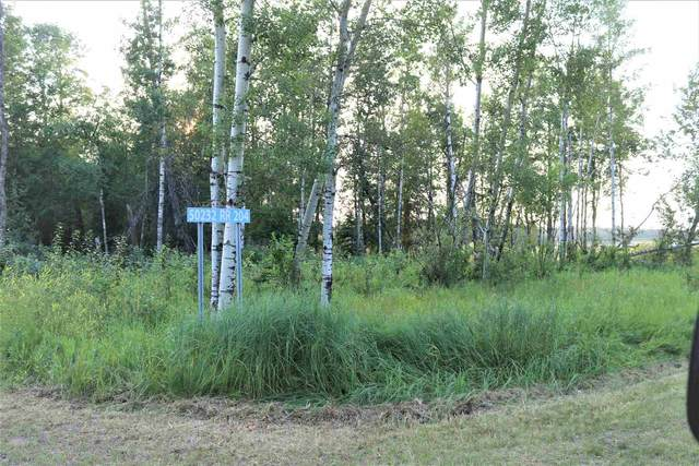 104 50232 Rge Rd 204, Rural Beaver County, AB T0B 4J0 (#E4257212) :: Initia Real Estate