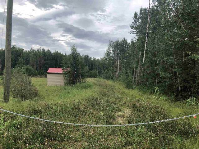 29 Village West, Rural Wetaskiwin County, AB T0C 2V0 (#E4258090) :: The Foundry Real Estate Company