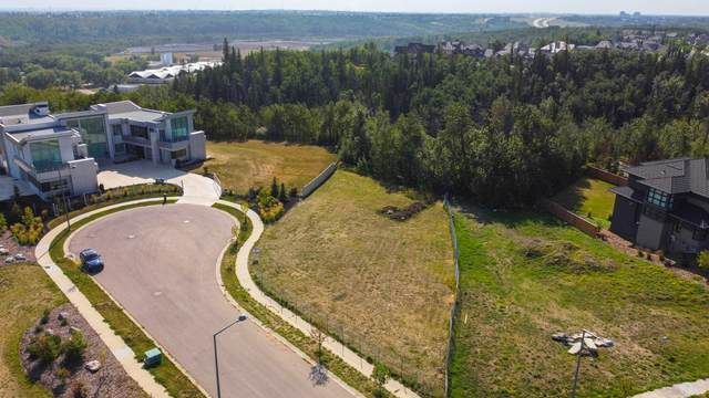 3739 Cameron Heights Place, Edmonton, AB T6M 0R1 (#E4259620) :: The Foundry Real Estate Company