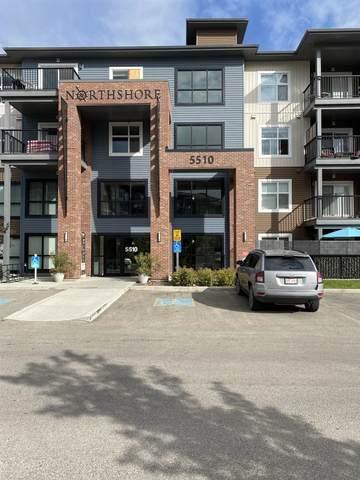 114 - 5510 Schonsee Drive, Edmonton, AB T5Z 0N9 (#E4261787) :: Initia Real Estate