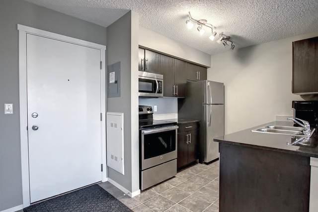 107 1510 Watt Drive, Edmonton, AB T6X 2E6 (#E4262211) :: Initia Real Estate