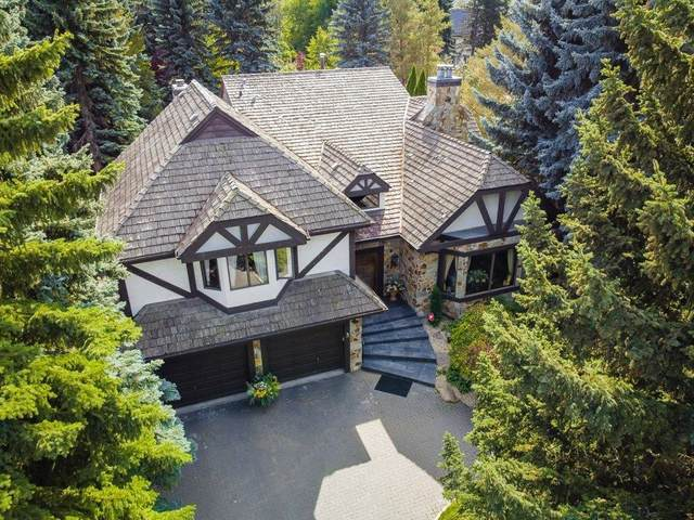 3 Whitemud Place, Edmonton, AB T6H 5X4 (#E4262784) :: The Foundry Real Estate Company