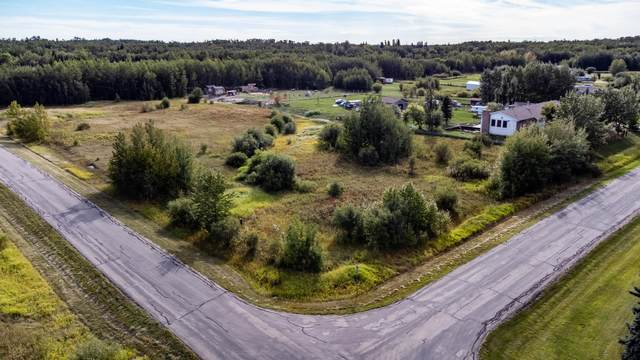 122 51069 RGE RD 215, Rural Strathcona County, AB T8E 1G7 (#E4262829) :: The Foundry Real Estate Company