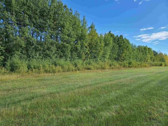 NE 34-48-8-5 Lot 1, Rural Brazeau County, AB T7A 2A3 (#E4262855) :: The Foundry Real Estate Company