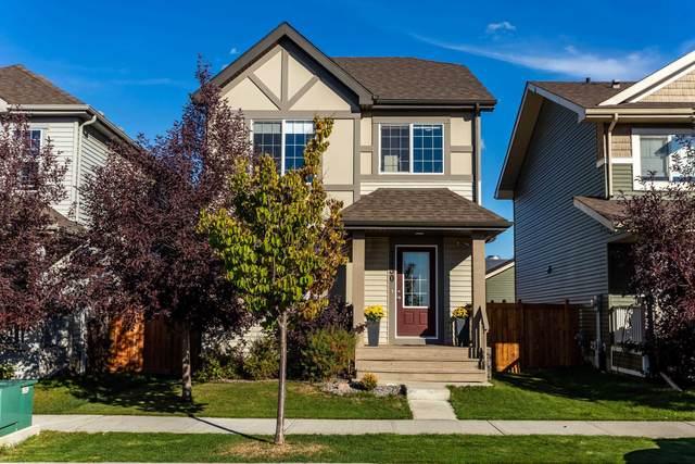 3430 Cutler Crescent, Edmonton, AB T6W 2B3 (#E4264146) :: Initia Real Estate